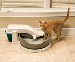 A few times a week, depending on how many cats you have. With one cat and  one litterbox, you could probably get away with cleaning it two to three  times a ...