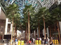 the winter garden atrium is a part of brookfield place which is a collection of buildings just across the west side highway from the world trade center