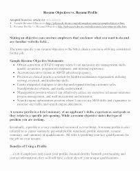 Nursing Resume Objective Examples Petite Objective Statement A