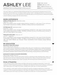 Windows Resume Template Simple 48 Marvellous Proper Resume Format Examples Of Resumes Sample