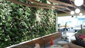 top 10 benefits of living green walls