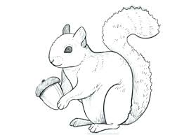 Squirrel Coloring Sheet Cheapcarinsurancewiinfo