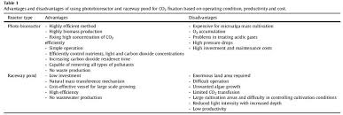 Advantages And Disadvantages Of Natural Gas Advantages And Disadvantages Of Using Photobioreactor And Raceway