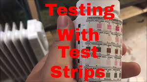 Tetra Test Strips Chart How To Use Test Strips To Check Your Water Quality Ammonia Test Nitrite Test Nitrate Test