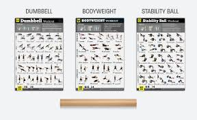 Body Fitness Chart Buy Gym Home Exercise Posters Set Of 3 Workout Chart Now