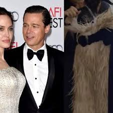Il vestito della rottura di Angelina Jolie, ha spinto Brad ...