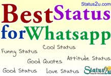 dost status in english