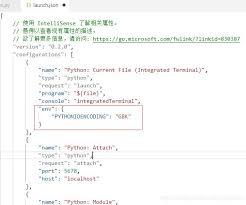 vscode debugging python terminal output