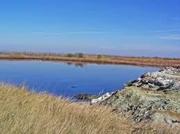 Загрязнение самарских водоемов Какую