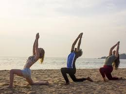 hatha and ashtanga vinyasa 100 hour yoga teacher 100 hours goa goa india ayuruniverse