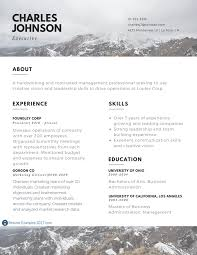 Executive Resume Examples To Follow Resume Examples 2017