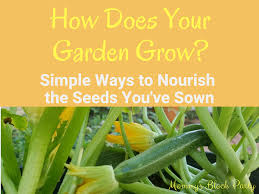 how does your garden grow simple ways to nourish the seeds you ve sown