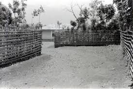 The Origins Of The Bamiléké Hedgescape Bocage Development From