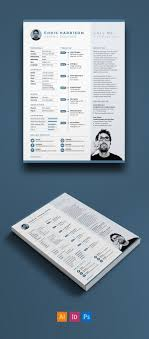 67 Best Resume Templates Images On Pinterest Professional Resume