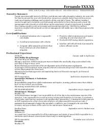 Paragon Resumes Reviews 28 Images Curriculum Vitae Modelo 100
