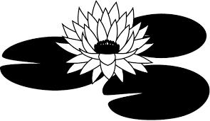 夏の花3 05 スイレン 花の無料イラスト素材 イラストポップ