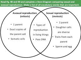 Compare And Contrast Venn Diagram Difference Between Mitosis And Meiosis Diagram Venn Answers