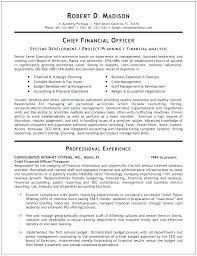 Cfo Sample Resume For Your Resume Writing Needs Bank Cfo Resume Adorable Cfo Resume