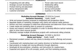 application letter key account manager cover letter format accounts executive resume sweet sales cover letter format accounts executive resume sweet sales account development manager cover letter