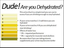 Body Hydration Level Chart Your Fascia Fountain Of Youth Hydrate For A Young Body