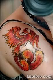 фото тату птица феникс 18072019 010 Phoenix Bird Tattoo