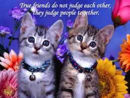 Images Of Beautiful Quotes On Friendship Best of Friendship Quotes True Friends Do Not Judge Each Other They Judge