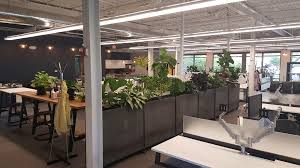 Inside Because These Planters Have Casters It Is Easy To Move And Reconfigure The Work Space When The Need Arises Also Having Plants As Part Of The Screen And Amazoncom Corten Steel Planters Nice Planter Llc