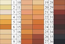 Skin Scanner Color Chart File Felix Von Luschan Skin Color Chart2 Svg Wikimedia Commons