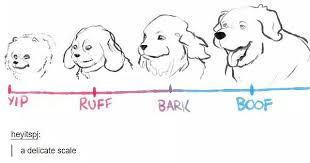 The Bork Scale For Dogs And Whatever Album On Imgur