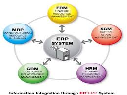 Enterprise Resource Planning And Human Resource Information