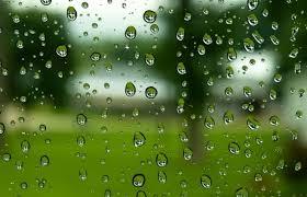 「梅雨」の画像検索結果