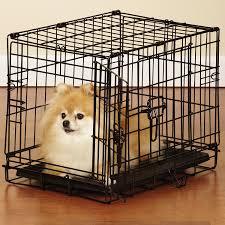 amazoncom  easy dog crates  black xlarge  pet beds  pet