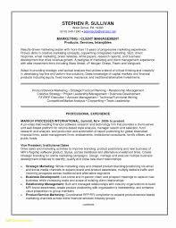 Skills Resume Template Microsoft Word Best Of 23 Traditional Resume