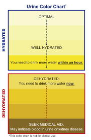 Dehydration Chart Urine Color This Is How To Check Your Urine Color To Tell If Youre