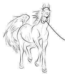 Kleurplaten Van Paarden Kleurplaat Overzicht