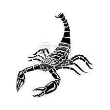 Plakát černá A Bílá Scorpion Pro Tetování Znamení Zvěrokruhu