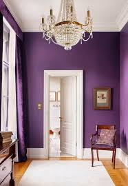 radiant orchid walls purple rooms