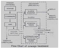Learn Microbes In Sewage Treatment Meaning Concepts