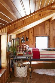 Ideas for a Cabin Ceiling