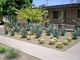 Scottsdale Backyard Design Xero Pro Modern Garden Landscape Design Phoenix