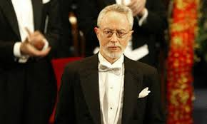 looking back j m coetzee s disgrace politico looking back j m coetzee s disgrace