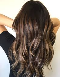 Long Layers With Tiny Blonde Highlights