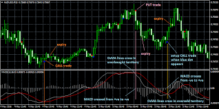 Trend Trader Binary Options Using Bollinger Bands To Gauge