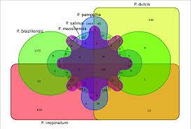 Venn Diagram Online Tool Venn Diagram Of Genes Shared And Not Shared Between The Gene