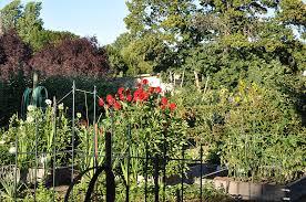 portland real estate insider portland community gardens