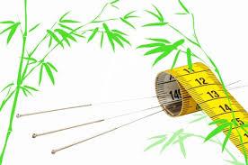 l acupuncture pour maigrir