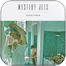 Mystery Jets Serotonin Album Cover Sticker
