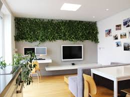 Indoor Plants Living Room 9 Indoor Plants You Cant Kill So Easily Atapco