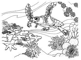 Free Coral Reef Coloring Pages Az Coloring Pages 5irebpaia Coral