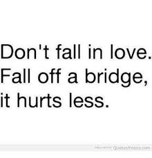 Fall In Love Quotes Best Don't Fall In Love Fall Off A Bridge It Hurts Less Enjoy More Quotes